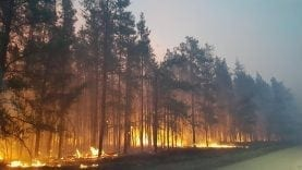 Forest Fire in South East Manitoba – Apr 29, 2018