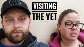 TJV – ANOTHER VET VISIT 😬 – #1579