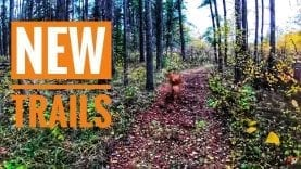 TJV | NEW TRAILS | #1826