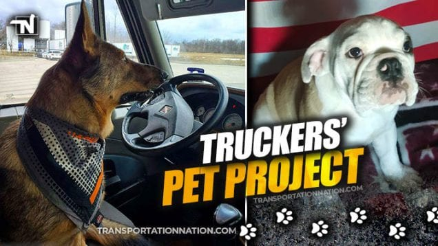 Truckers Pet Project