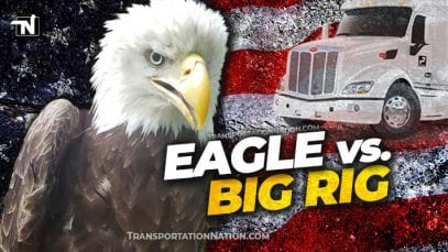 Eagle vs Big Rig