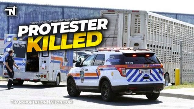 Protester Killed by Livestock Truck in Canada