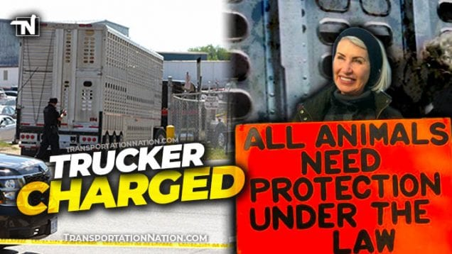 Protester Killed by Livestock Truck in Canada – Regan Russell – Trucker Charged