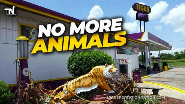 Tiger Truck Stop Getting Rid of Animals