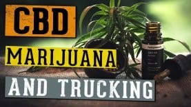 What Truckers Need to Know About CBD Oils & Marijuana Laws (Video by OOIDA)