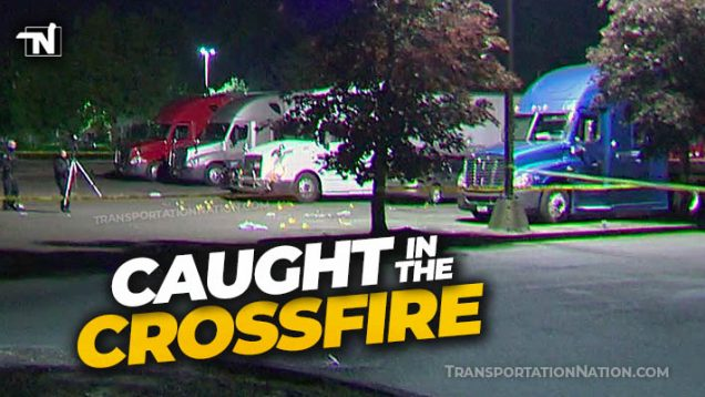 Gang Fight Crossfire